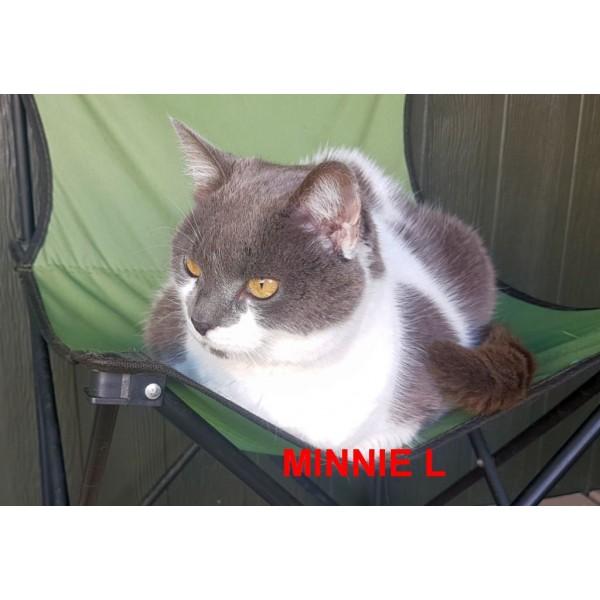 Minnie L